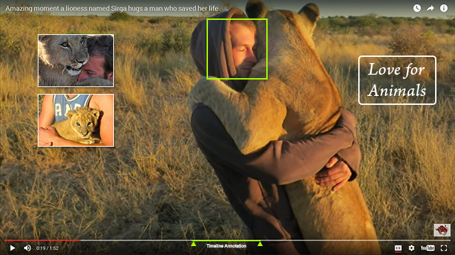 Video Annotations: A Powerful and Innovative Tool for Education